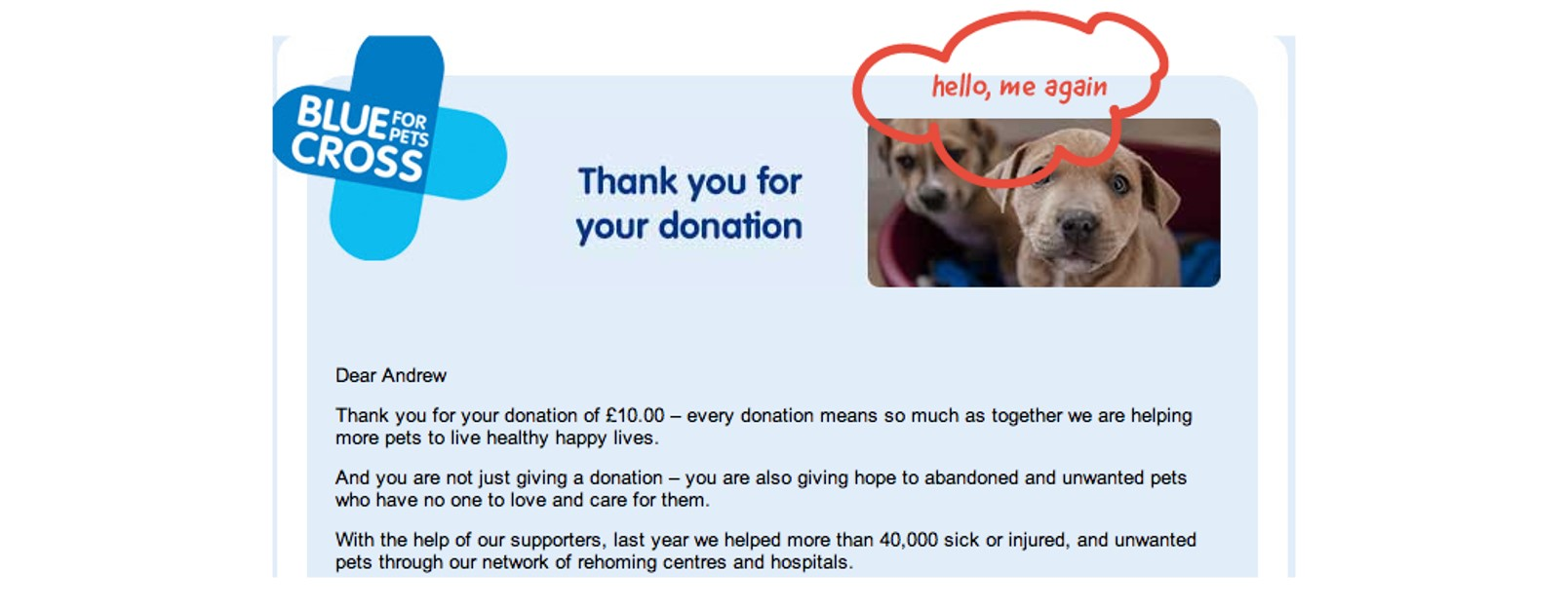 blue cross email